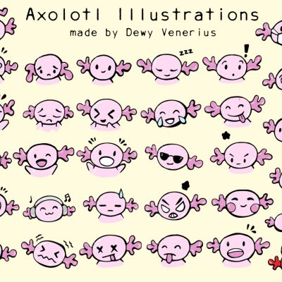 Axolotl illustrations