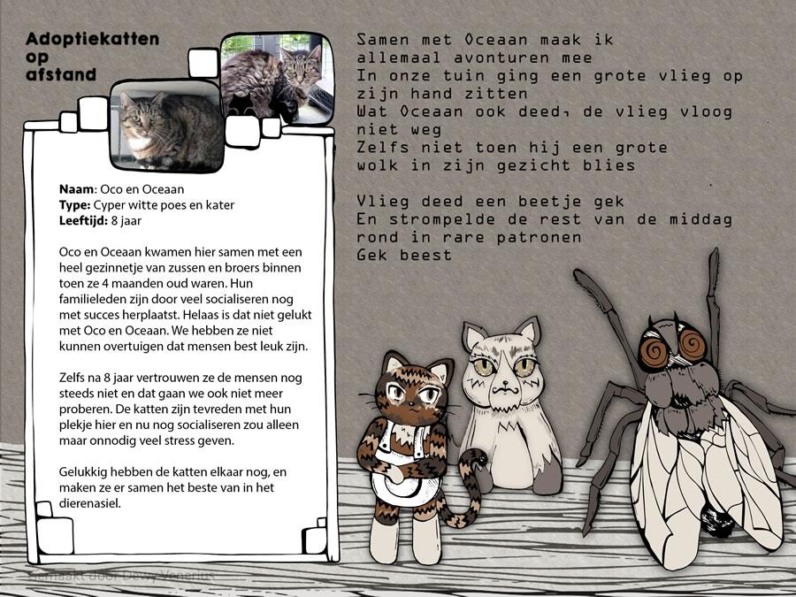 Illustratieproject Katvertenties Dewy Venerius