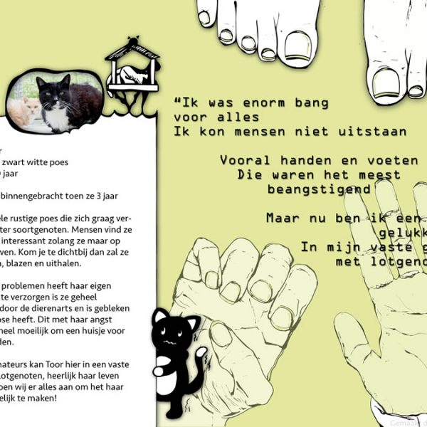 Kat Toor advertentie